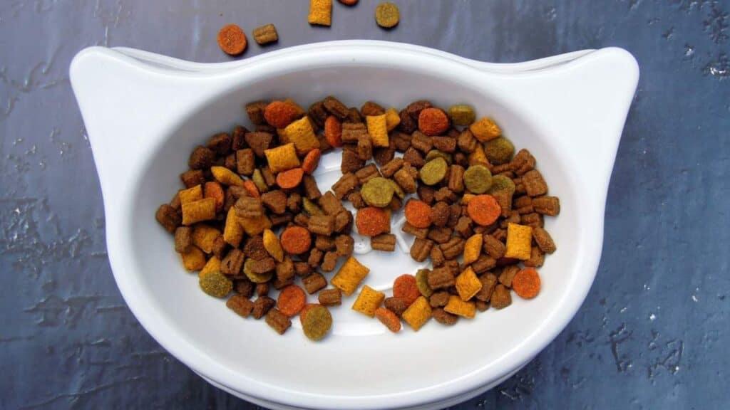 Rekomendasi Makanan Kucing Persia by PxHere