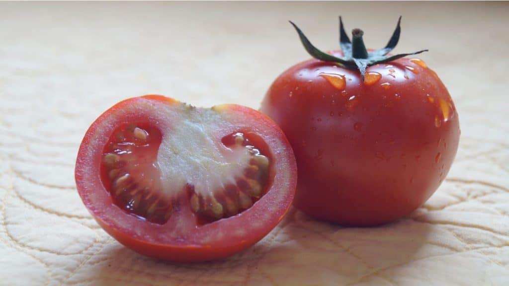 Tomat by Ayesha Firdaus Unsplash