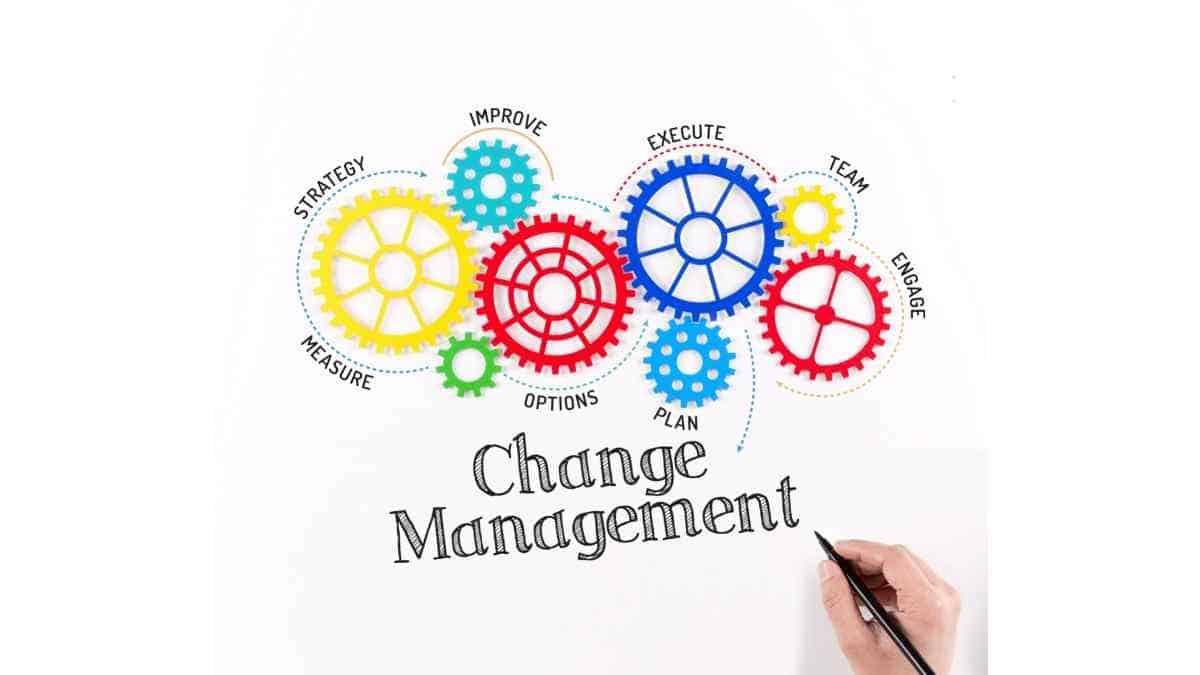 4 Jenis Manajemen Bisnis dan Contohnya